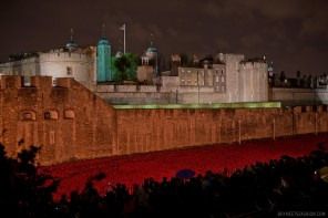 The Tower of London on Armistice Day